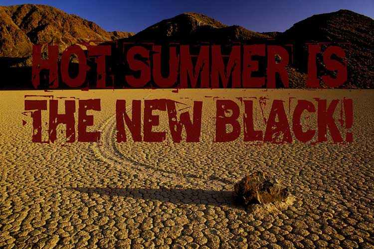 hot-summer-is-the-new-black-tag